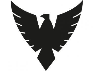 phoenix cosplay avengers applique