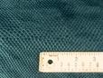 Macro shot of green snakeskin to show scale. thumbnail image.